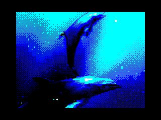 Delfin (Delfin)