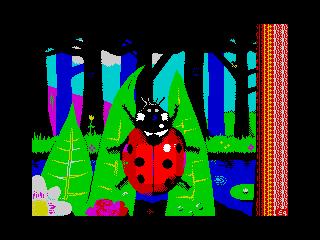 Giant Ladybird (Giant Ladybird)
