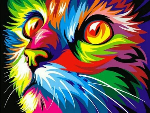 Cat inspiration