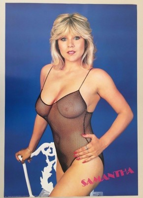 Samantha Fox inspiration