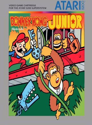 Donkey Kong Jr. inspiration