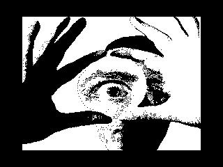 Any Vision (Any Vision)