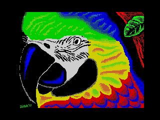 Parrot (Parrot)