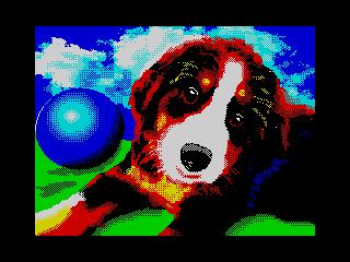 Puppy (Puppy)