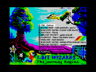 1-bit Wizards (1-bit Wizards)