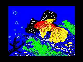 Fishs (Fishs)