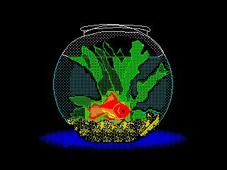 Рыбка (Рыбка)