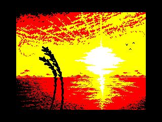 Wheat at sunset (Wheat at sunset)
