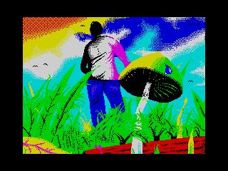 semilanceta hunting (semilanceta hunting)