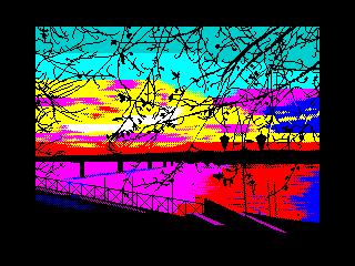 Tree branches at sunset (Tree branches at sunset)