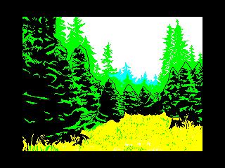 12 - Spruce (12 - Spruce)