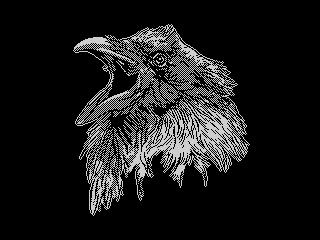 Totem: raven (Totem: raven)