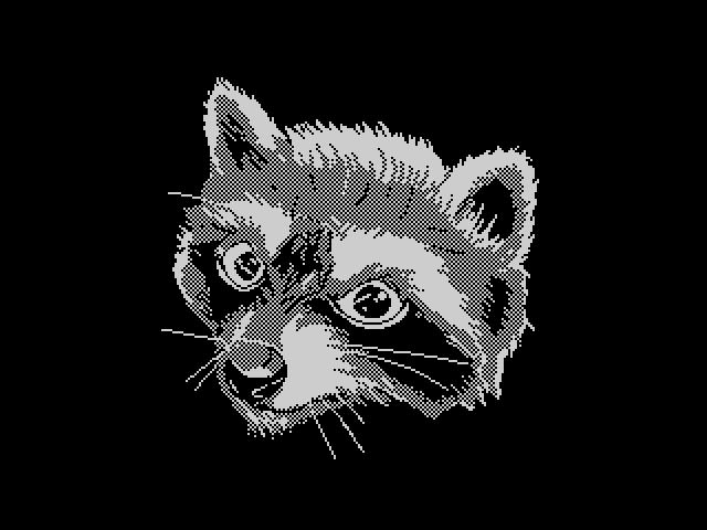 Totem: raccoon