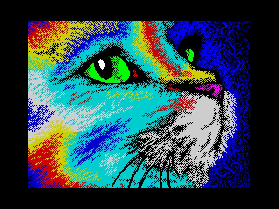 Rainbow Cat 2018