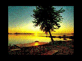 Seashore  (Seashore )