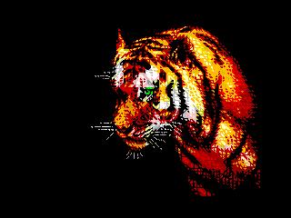 Like a Tiger (Like a Tiger)