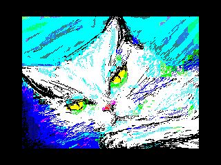 Cat's Dream  (Cat's Dream )