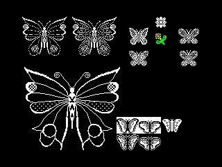 Buterfly (Buterfly)