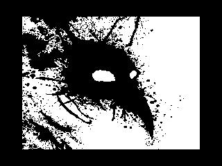 Raven (Raven)