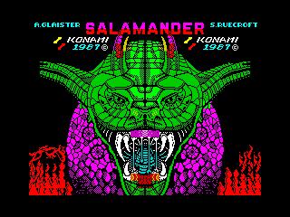 Salamander (Salamander)