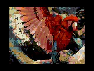 Parrot2 (Parrot2)
