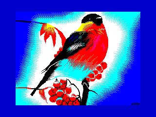 Bullfinch (Bullfinch)