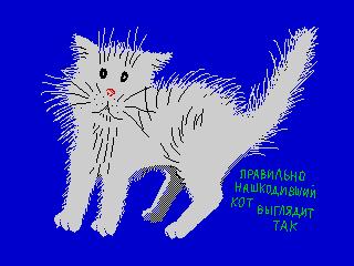 Кот (Кот)