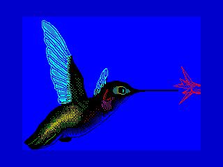 Колибри (Колибри)