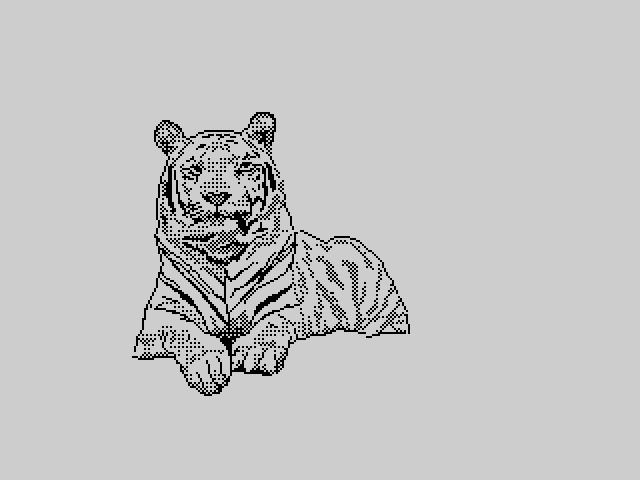 Tigr (unfinished)
