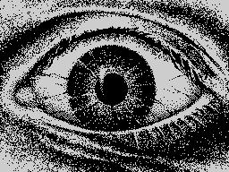 eye 2 eye
