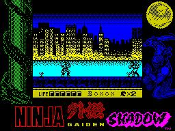 Ninja Gaiden Shadow Warriors