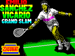 Emilio Sanchez Vicario Grand Slam